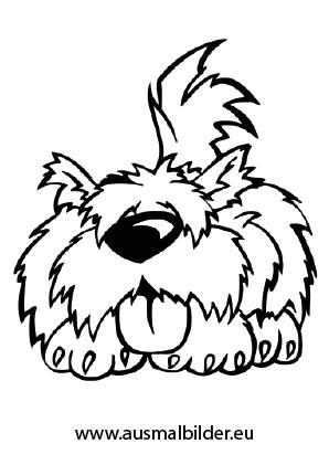 ausmalbilder wuschliger hund - hunde malvorlagen