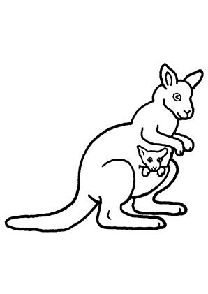 ausmalbild känguru 2 zum ausdrucken