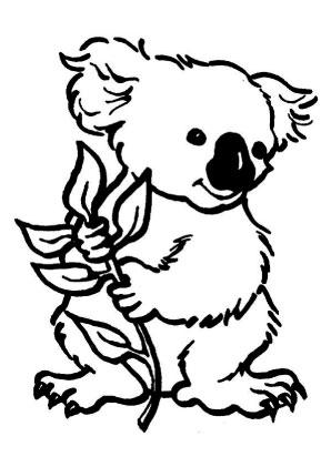 Ausmalbilder Koala 1 Koalas Malvorlagen