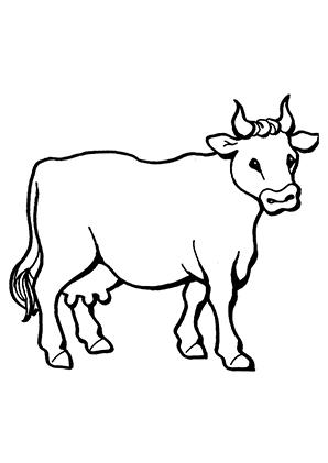 ausmalbilder kuh 5 - kühe malvorlagen
