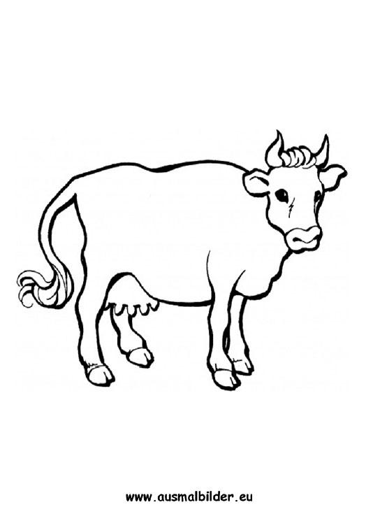 Ausmalbilder Kuh Kühe Malvorlagen