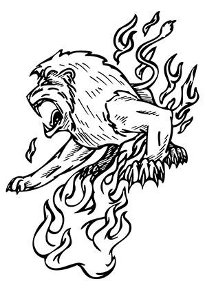 Ausmalbilder Aggressiver Löwe Löwen Malvorlagen