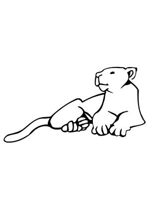 ausmalbilder ausruhende löwin - löwen malvorlagen