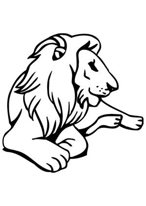 ausmalbilder ausruhender löwe - löwen malvorlagen