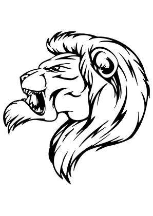 ausmalbild gemeiner löwe zum ausdrucken