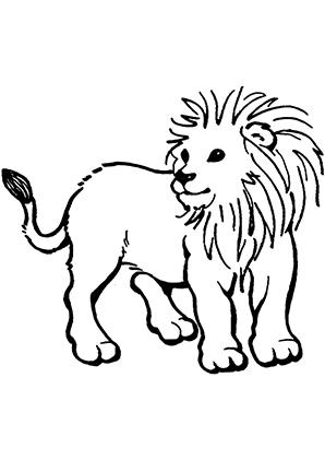 ausmalbilder junges löwenkind - löwen malvorlagen