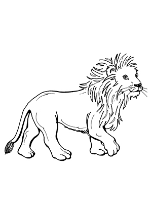 Ausmalbilder Löwe 6 - Löwen Malvorlagen