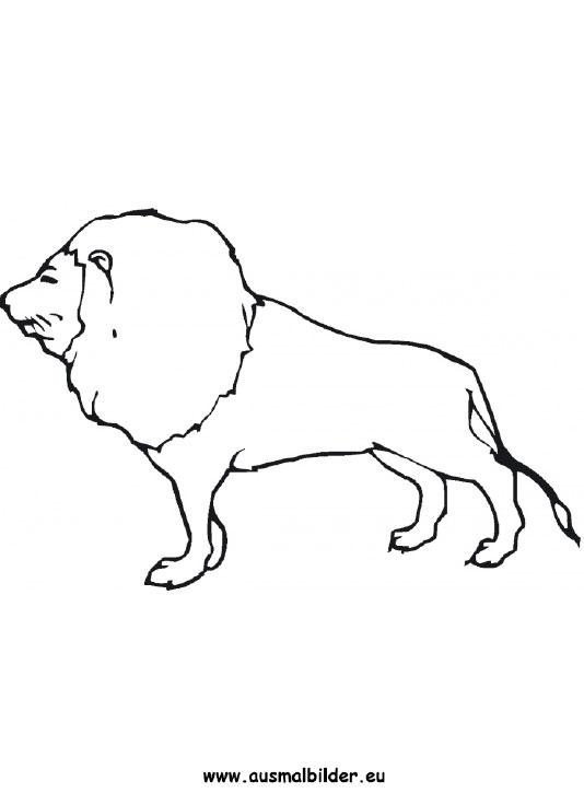 ausmalbild löwe zum ausdrucken
