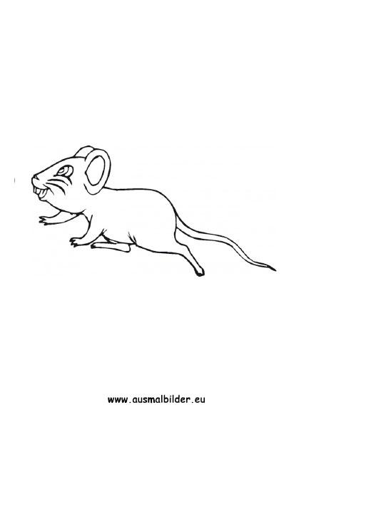 Ausmalbilder Maus Mäuse Malvorlagen