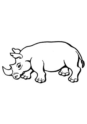 Ausmalbilder Nashorn 2 Nash 246 Rner Malvorlagen