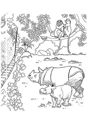 ausmalbild nashorn im zoo zum ausdrucken