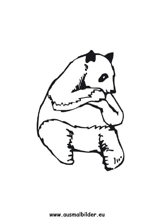 ausmalbild panda zum ausdrucken