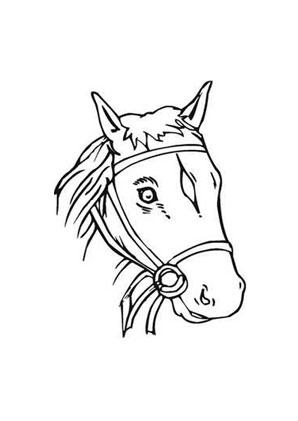 ausmalbild brauner pferdekopf zum ausdrucken