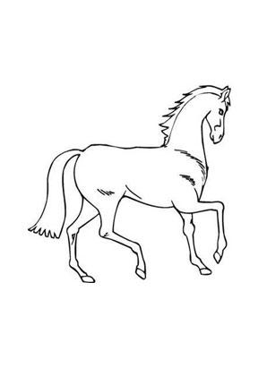 Tolle Rodeo Pferd Malvorlagen Fotos - Malvorlagen Online ...