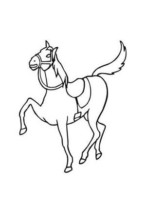 ausmalbild dressiertes pferd zum ausdrucken