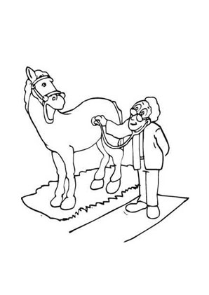 ausmalbild pferd beim tierarzt zum ausdrucken