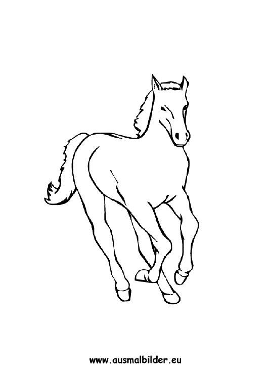 Ausmalbilder Pferd Pferde Malvorlagen