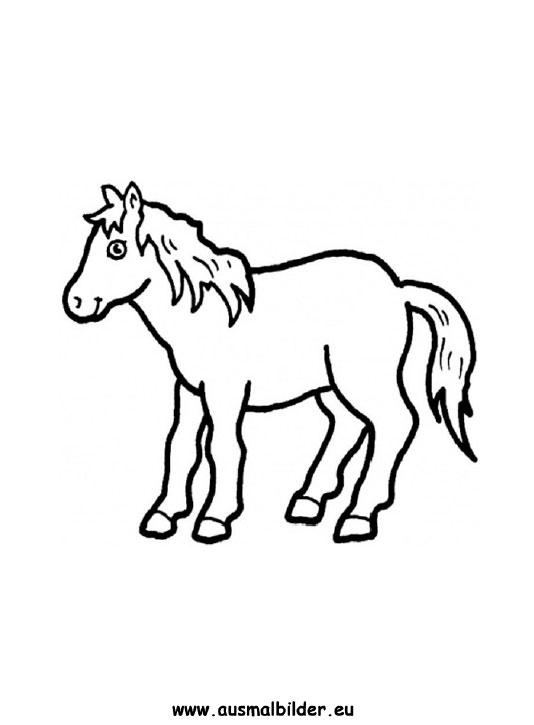 Ausmalbilder pony - pferde Malvorlagen