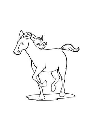 ausmalbild trabendes pferd zum ausdrucken
