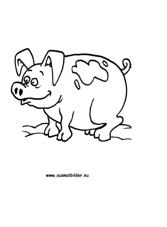 Ausmalbilder Schwein - Schweine Malvorlagen