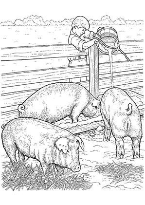 Ausmalbilder Schweine im Stall - Schweine Malvorlagen