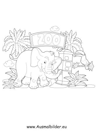 ausmalbilder elefant im zoo - zoo malvorlagen