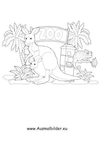 ausmalbilder känguru im zoo - zoo malvorlagen