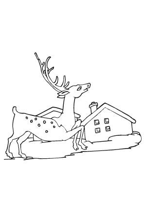 ausmalbilder rentier im dorf - weihnachtsrentier malvorlagen