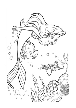 Ausmalbilder Arielle Die Meerjungfrau Arielle Sebastian Und Fabius