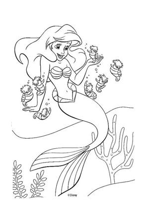 Ausmalbilder Arielle die Meerjungfrau - Arielle Malvorlagen